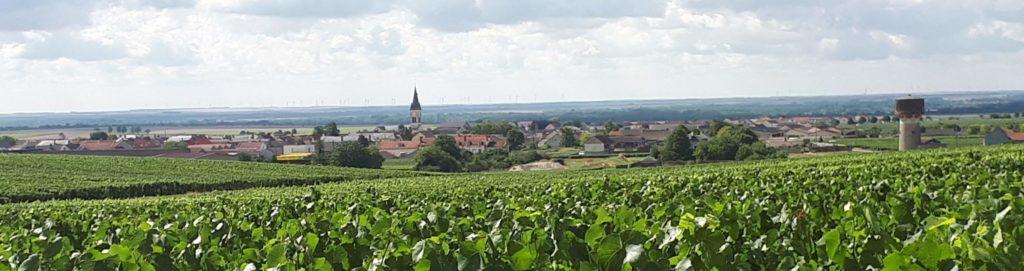 Vue_panoramique_sur_Bouzy