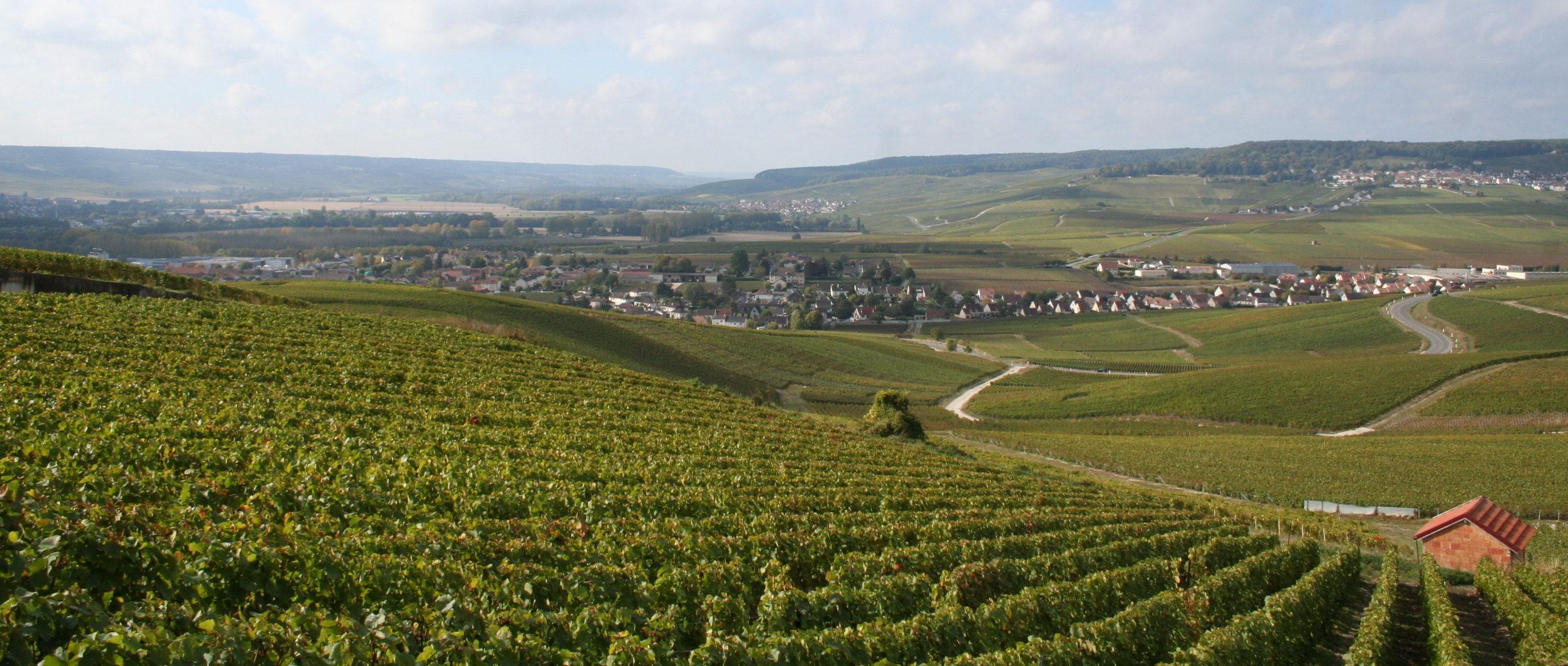Vue_de_Dizy_depuis_les_coteaux_historiques_de_Champagne