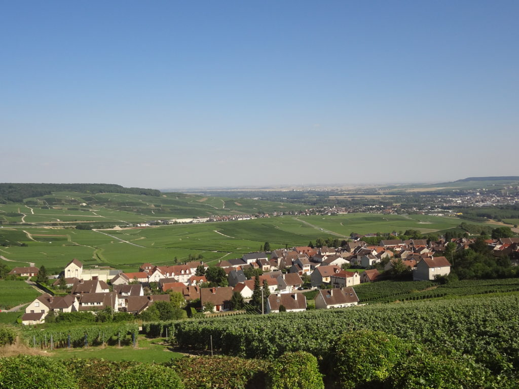 vue_panoramique_sur_Hautvillers