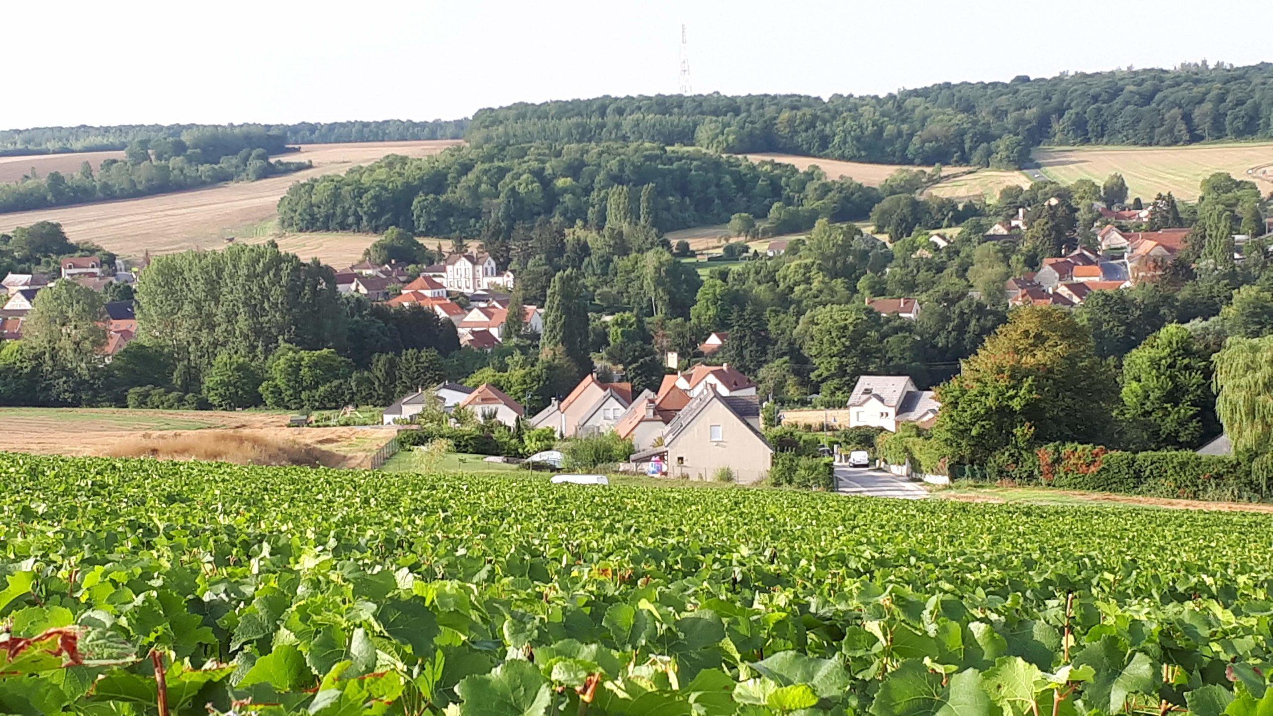 vue_panoramique_sur_le_village_de_nanteuil-la-foret