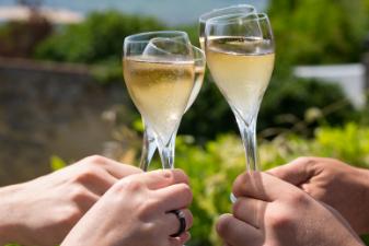 aperitif-champagne-flute-vignoble