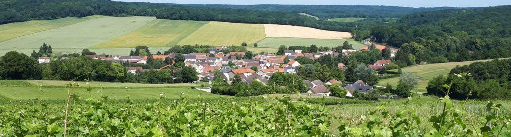 Vue sur le village de Louvois depuis les vignes
