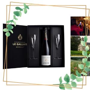 vitrine_de_noel_champagne_le_gallais